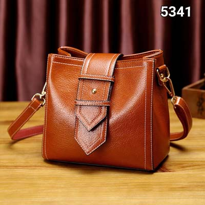 5341 Simple Elegant Handbag (Brown)
