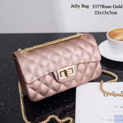 5377 Elegant Fashion Jelly Bag (Rose gold)