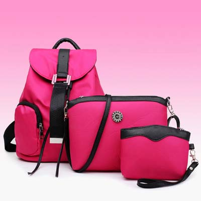 6617 3 in 1 Nylon Waterproof Backpack (Rose)